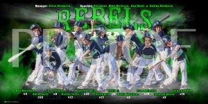 Print - Michigan Rebels Baseball Team