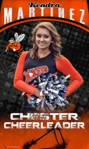 Banner - Chester High School Cheerleading Seniors
