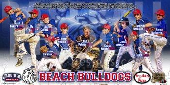 Banner -  2017 Beach Bulldogs Fall Baseball Team