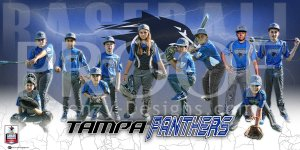 Digital - Baseball - Tampa Panthers