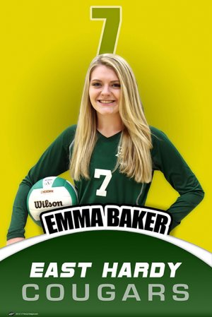 Banner - 2018-19 East Hardy High School Volleyball