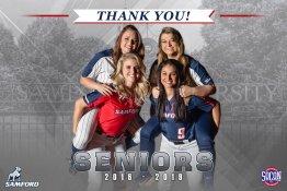 Banner - 2019 Custom Senior Softball Banner - Samford University