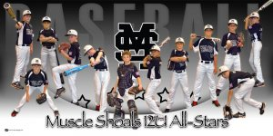 Banner - Starkville Longhorns Baseball Team