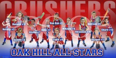 Print - 2014 Oak Hill Crushers 6U Baseball Team