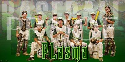 Banner - 2014 Brevard Plasma Baseball Team 2.5 x 5