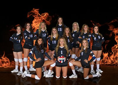Banner - Decatur Lady Eagles Volleball Team