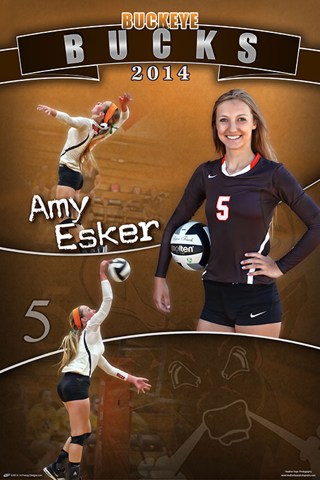 custom volleyball banners custom sports posters